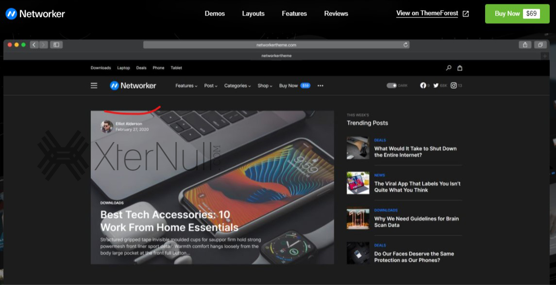 NetWorker v1.1.1 WordPress Theme [Nulled]